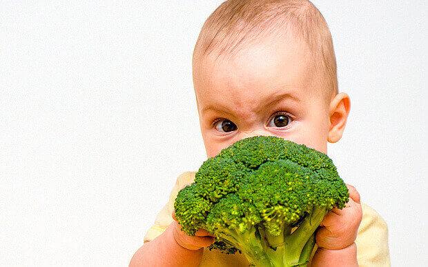 comida casera para bebé